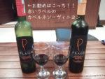 バリ島 サヌール ワインが最安で買える酒屋 T'n A Bottle Shop